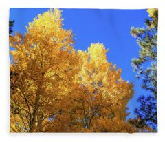 Arizona Aspens In Fall 2 Fleece Blanket