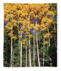 Arizona Aspens In Fall 3 Fleece Blanket