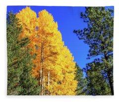 Arizona Aspens In Fall 4 Fleece Blanket