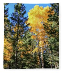 Arizona Aspens In Fall 5 Fleece Blanket