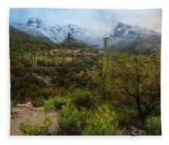 Arizona Winter Light Fleece Blanket