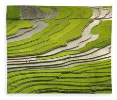 Asian Rice Field Fleece Blanket