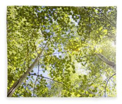 Aspen Canopy With Sun Flare Fleece Blanket