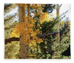 Aspen Tree Close Fleece Blanket