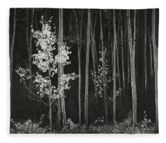Aspens Northern New Mexico Fleece Blanket