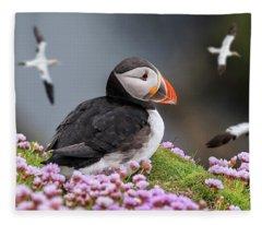 Atlantic Puffin And Soaring Gannets Fleece Blanket