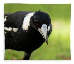Australian Magpie Outdoors Fleece Blanket