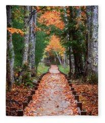 Autumn At Jesup Path Fleece Blanket
