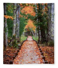Autumn At Jesup Path Fleece Blanket