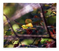 Fleece Blanket featuring the photograph Autumn Beginnings by Whitney Goodey