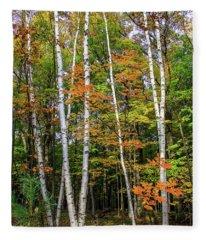 Autumn Grove, Vertical Fleece Blanket