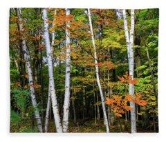 Autumn Grove, Wisconsin Fleece Blanket