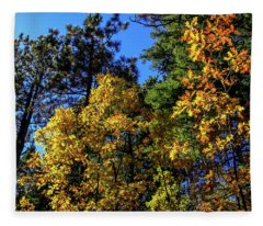 Autumn In Apache Sitgreaves National Forest, Arizona Fleece Blanket