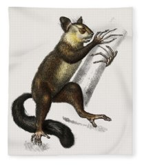 Aye-aye  Cheiromys Madagascariensis  Illustrated By Charles Dessalines D' Orbigny  1806-1876  Fleece Blanket
