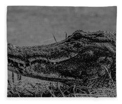 B And W Gator Fleece Blanket
