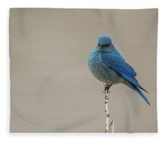 B52 Fleece Blanket