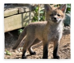 Baby Fox Fleece Blanket