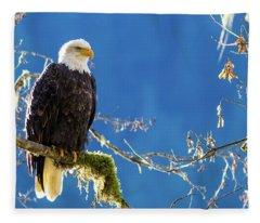Backlit Bald Eagle In Squamish Fleece Blanket