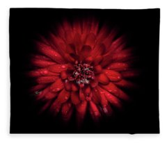 Fleece Blanket featuring the photograph Backyard Flowers 45 Color Flow Version by Brian Carson