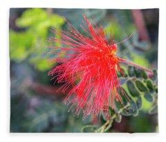 Baja Fairy Duster Fleece Blanket