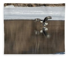 Bald Eagle 2018-14 Fleece Blanket