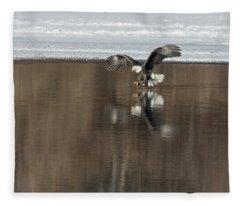 Bald Eagle 2018-14 Fleece Blanket