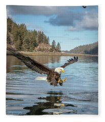 Bald Eagle Fishing In Sadie Cove Fleece Blanket
