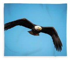 Bald Eagle In Flight  Fleece Blanket