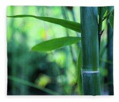 Bamboo 0321 Fleece Blanket