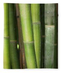 Bamboo Stalk 4057 Fleece Blanket