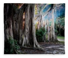 Banyan Ft Lauderdale Fleece Blanket