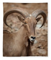 Barbary Sheep Portrait Fleece Blanket