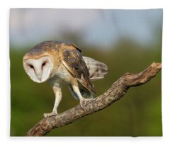 Barn Owl 5151801 Fleece Blanket