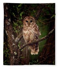 Barred Owl At Dusk Fleece Blanket