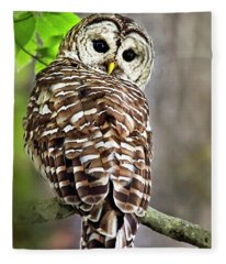 Fleece Blanket featuring the photograph Barred Owl by Christina Rollo
