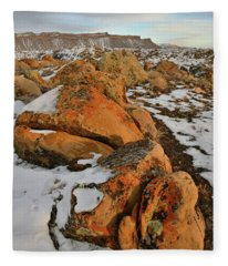 Beautiful Boulders At The Book Cliffs Fleece Blanket