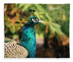 Beautiful Colourful Peacock Outdoors In The Daytime. Fleece Blanket