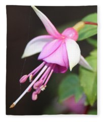 Beautiful Fuchsia Fleece Blanket