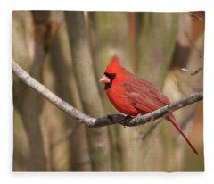 Beautiful Male Cardinal Fleece Blanket