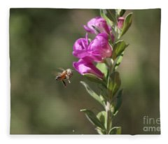 Bee Flying Towards Ultra Violet Texas Ranger Flower Fleece Blanket