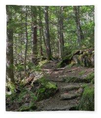 Beech Mountain Trail Acadia National Park Fleece Blanket