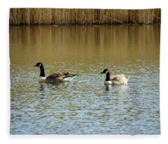 Bidston.  Bidston Moss Wildlife Reserve. Two Geese. Fleece Blanket