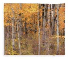Birches In Autumn Fleece Blanket