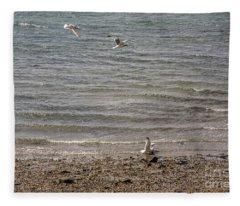 Bird Landing Fleece Blanket
