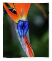 Birds Of Paradise Up Close Fleece Blanket