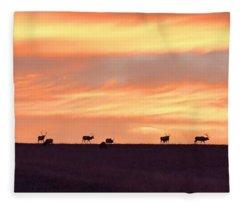 Bison Elk Panorama Fleece Blanket