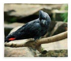 Black And Red Cockatoo. Fleece Blanket