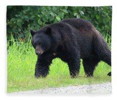 Black Bear Crossing Fleece Blanket