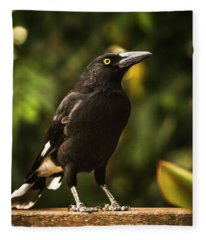 Black Currawong Bird Fleece Blanket