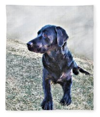 Black Labrador Retriever - Daisy Fleece Blanket